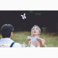 Летающая бабочка вылетающая из открытки в Саратове