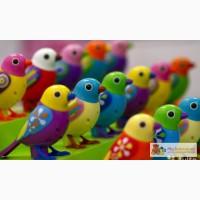 Интерактивная птичка Digi Birds в Новосибирске