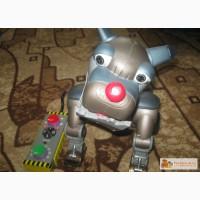 Собака робот Рекс в Красноярске