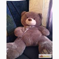 Плюшевый медведь) в Зеленограде