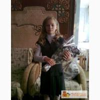 Школьный сарафан и выпускное платье в Омске