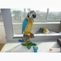 Игрушка интерактивная Попугай Умный Кеша в Челябинске